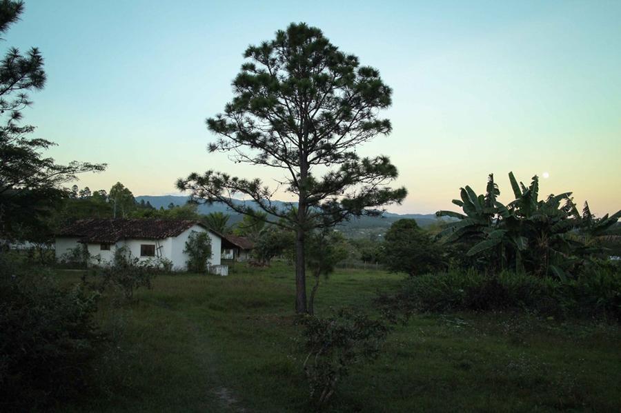 Zambrano in Honduras