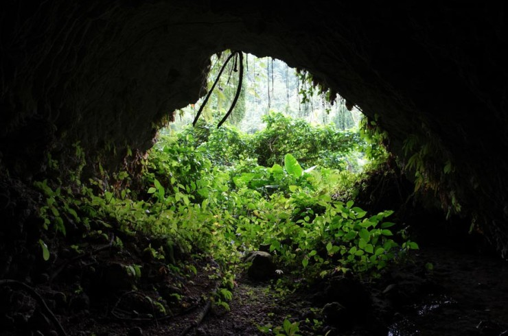 Hidden Cave in Cornwall Barracks Jamaica
