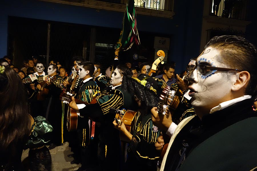 Bands playing music on the day of the dead in Oaxaca