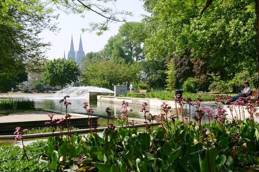 Rheinpark in Cologne