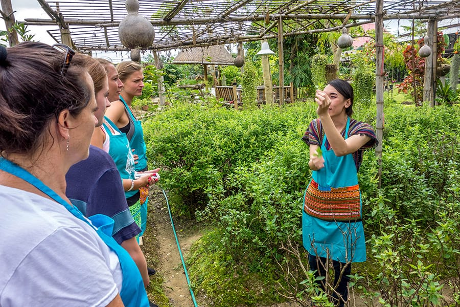 Mama Noi Thai Cookery School: Organic Farm Visit