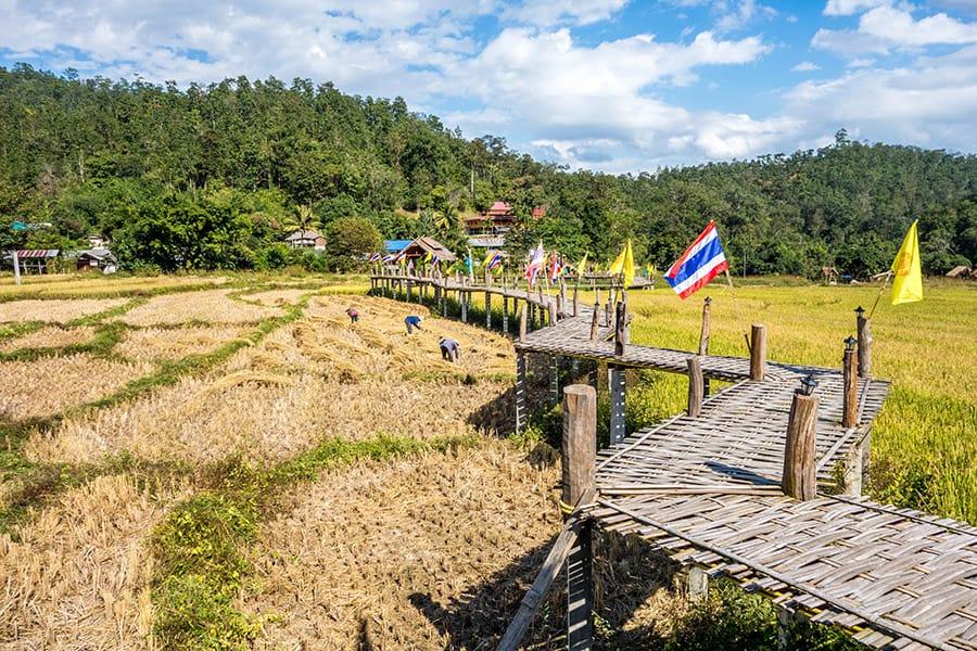 Su Thong Pae, a bamboo bridge in Pai Thailand