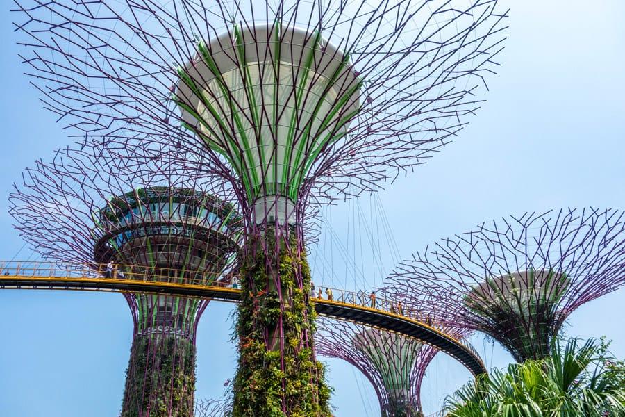 Supertrees at the Gardens by the Bay in Singapore