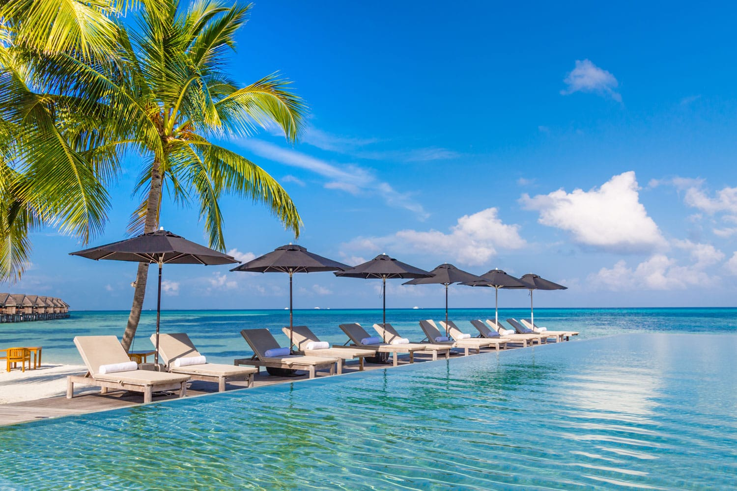 Where To Stay In Jamaica Best Hostels Amp Hotels In Jamaica