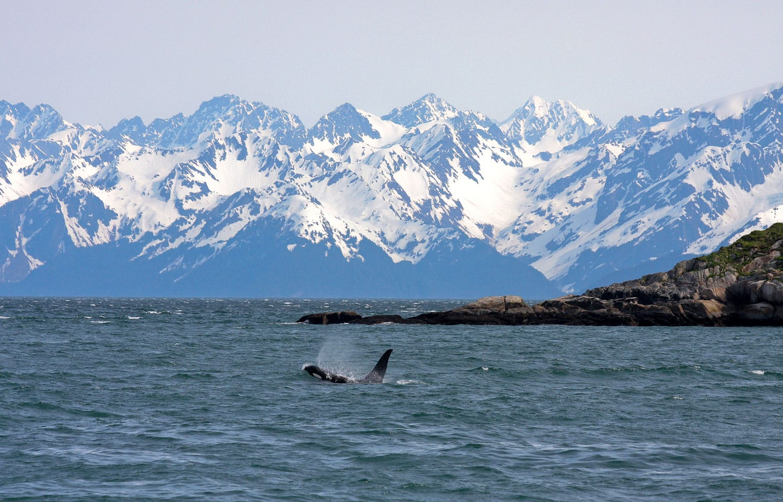 Kenai National Park in Alaska