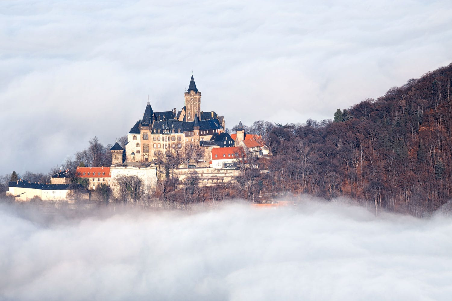 Castle above the clouds in Wernigerode