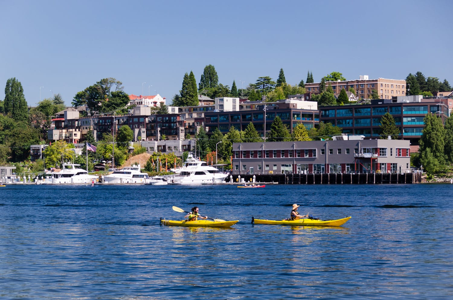 A couple of kayakers enjoying a sunny day on Lake Union in Seattle