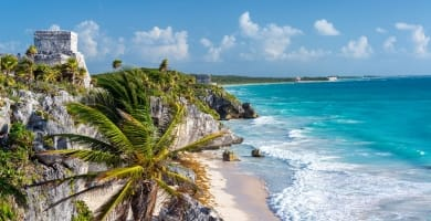 Ruins of Tulum, Mexico and a palm tree overlooking the Caribbean Sea in the Riviera Maya, Mexico