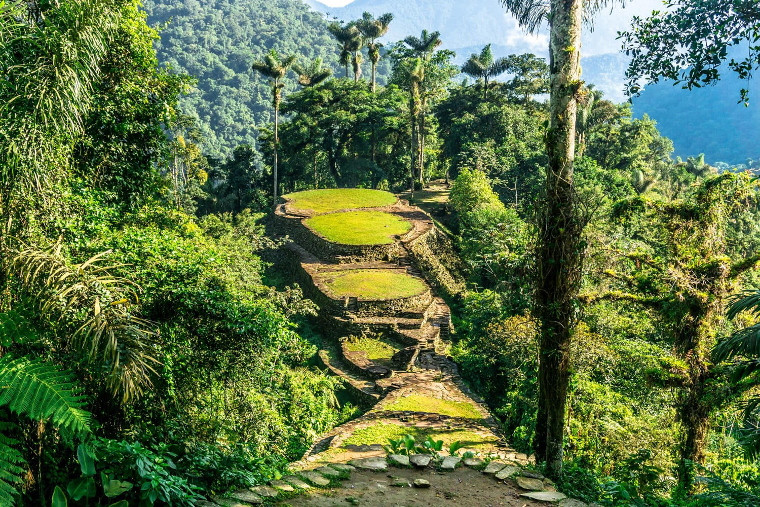 Ciudad Perdida (The Lost City Track) in Colombia