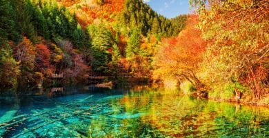 Amazing view of the Five Flower Lake (Multicolored Lake) among colorful fall woods in Jiuzhaigou nature reserve, China