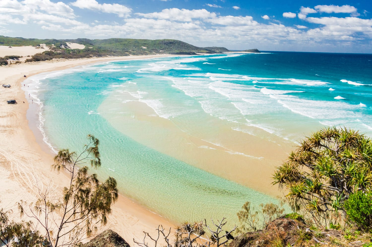 Fraser Island at Great Sandy National Park in Australia
