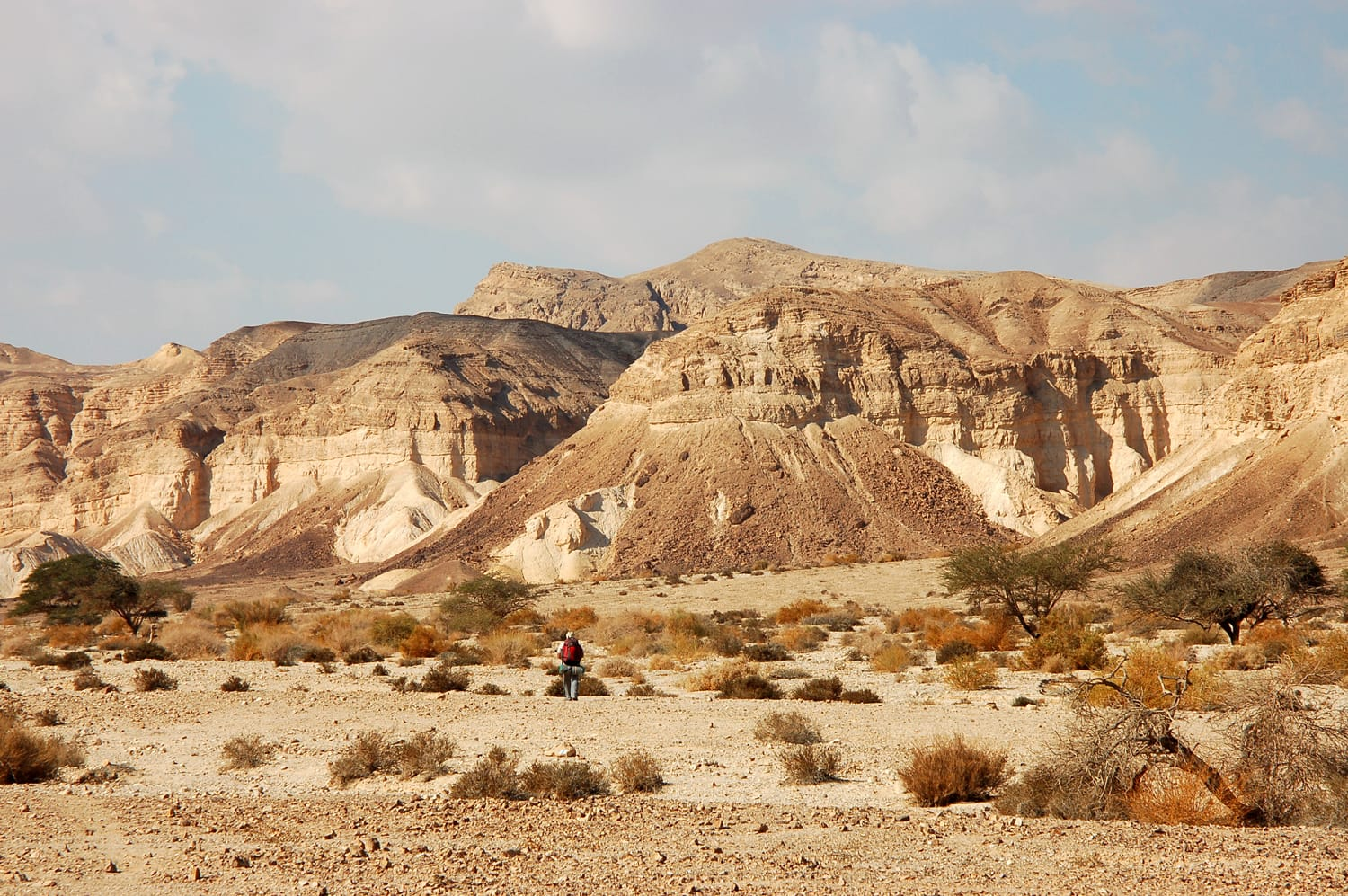Hiking in Negev desert, Israel.