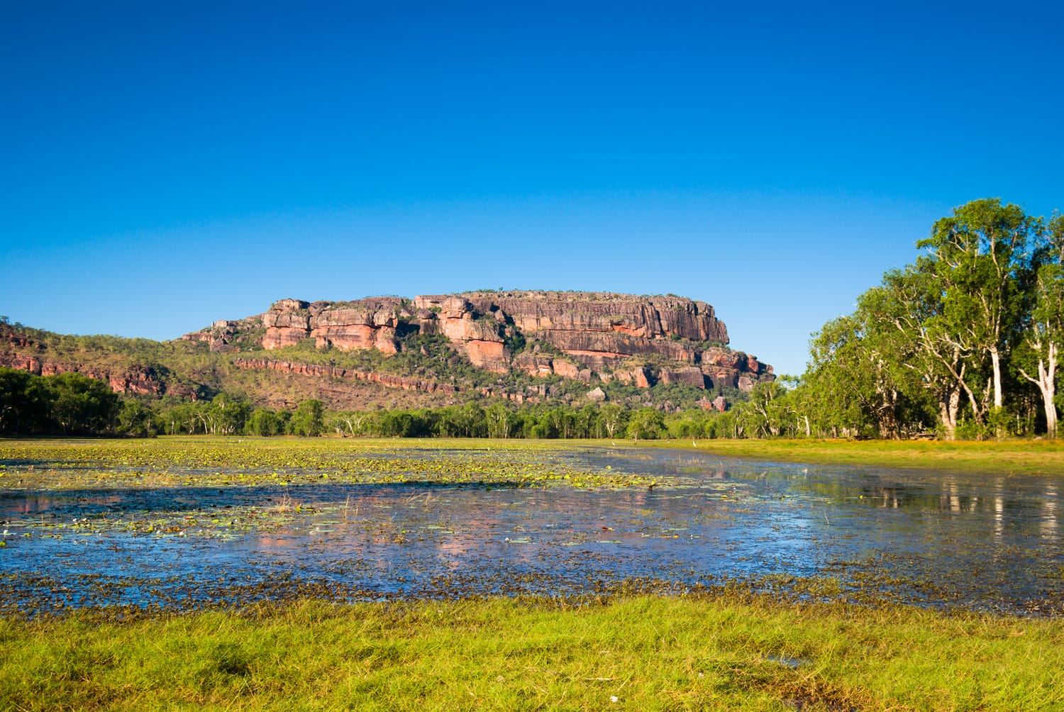 View to Nourlangie from Anbangbang Billabong, Kakadu National Park, Australia