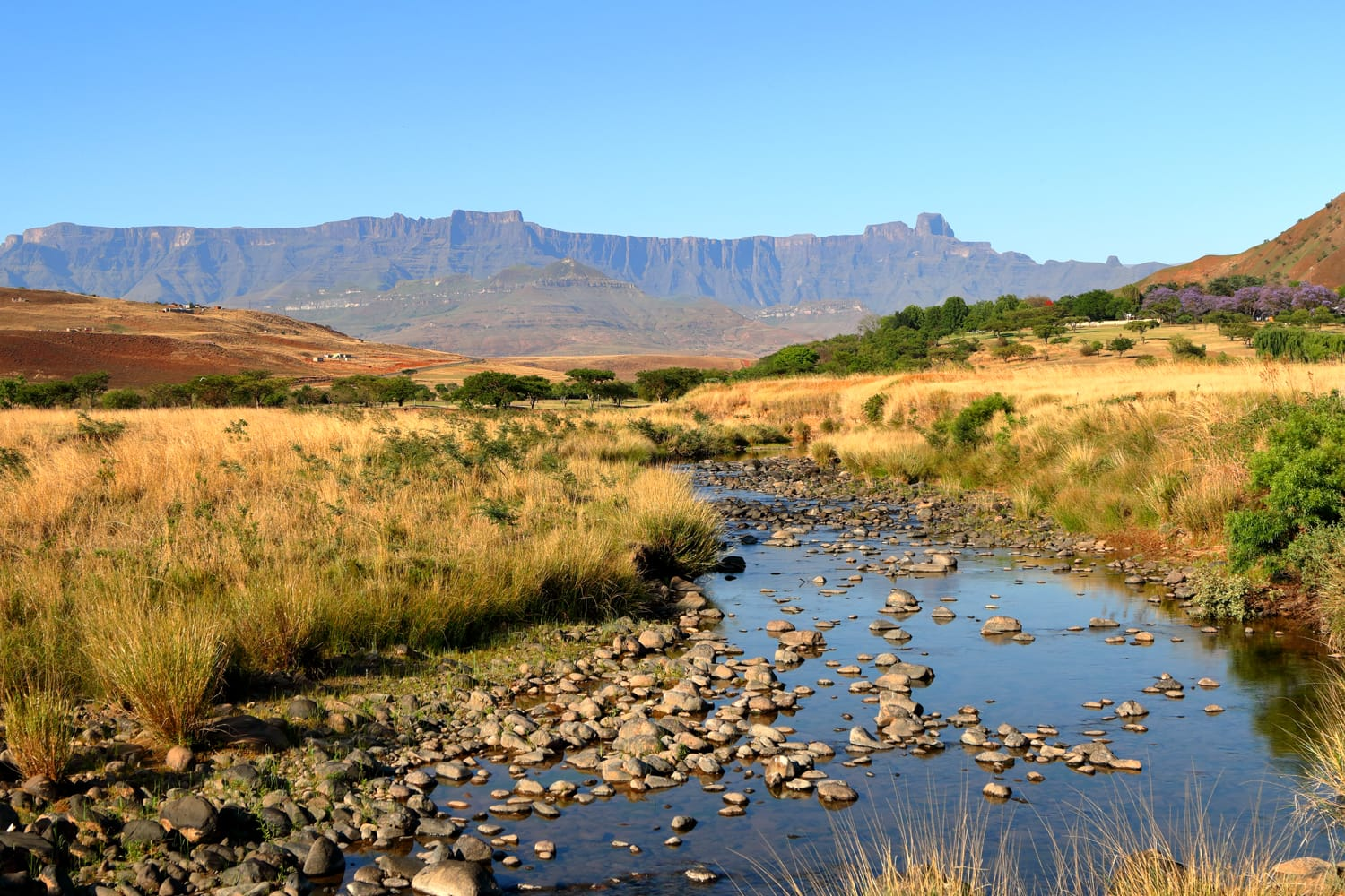 Drakensberg Amphitheatre mountain range in KwaZulu Natal, South Africa