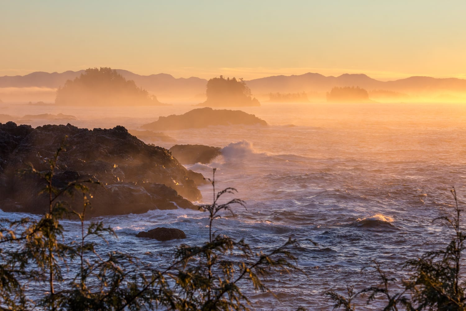 Dawn at Pacific Rim National Park in Canada
