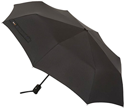 AmazonBasics Travel Umbrella