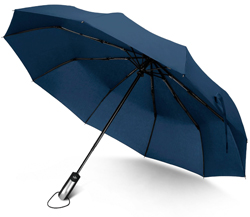 Rainlax Travel Windproof Umbrella