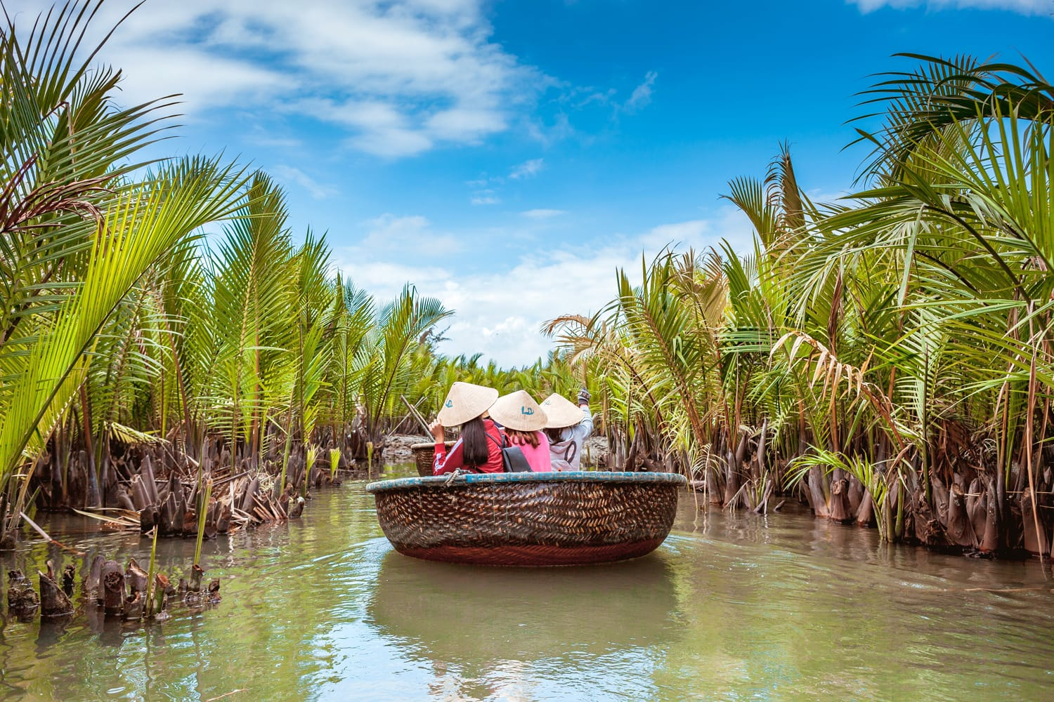 Tourists visit water coconut forest in Hoi An, Vietnam