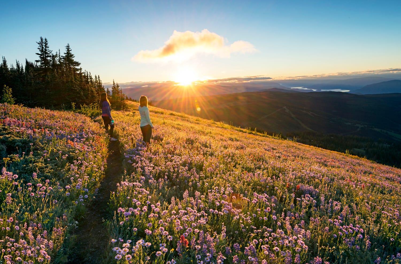 Alpine View at Sun Peaks Resort in Canada