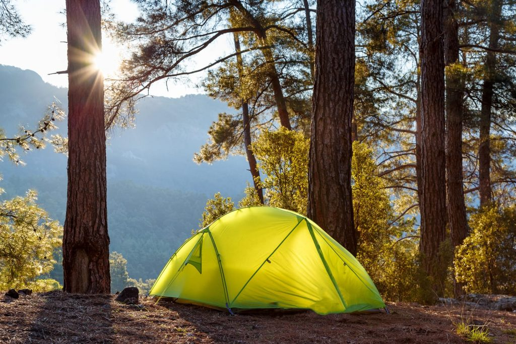yellow tent in forest