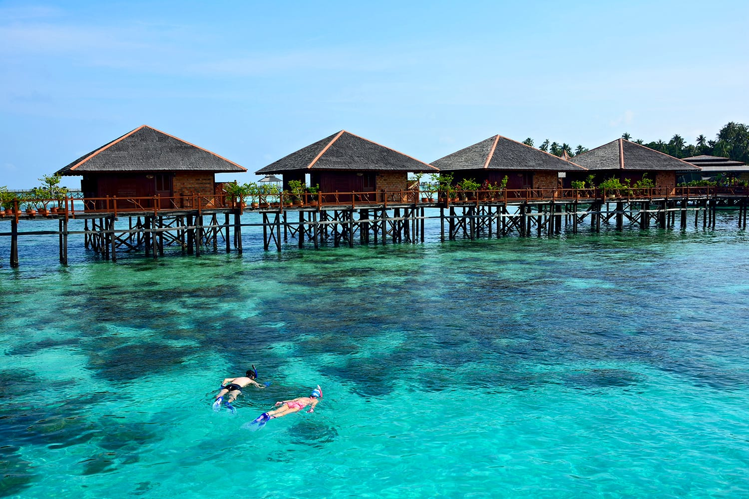 Snorkeling tourists in the ocean at Mabul island, Malaysia - Image