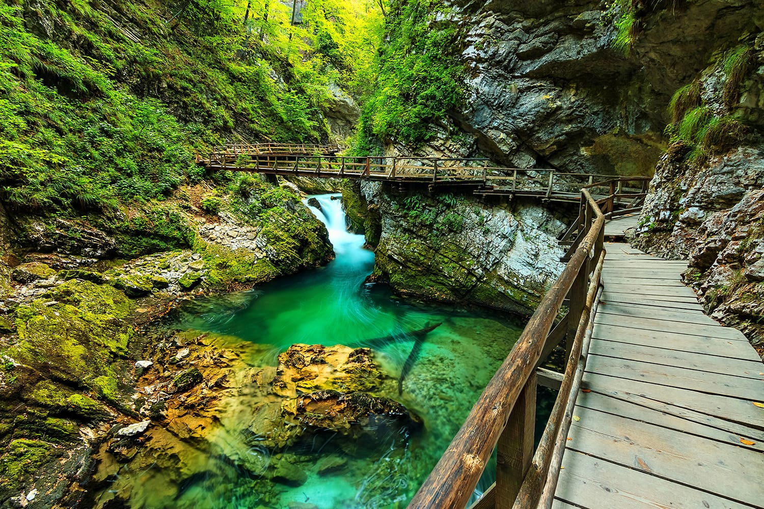 Vintgar gorge and wooden path,Bled,Slovenia