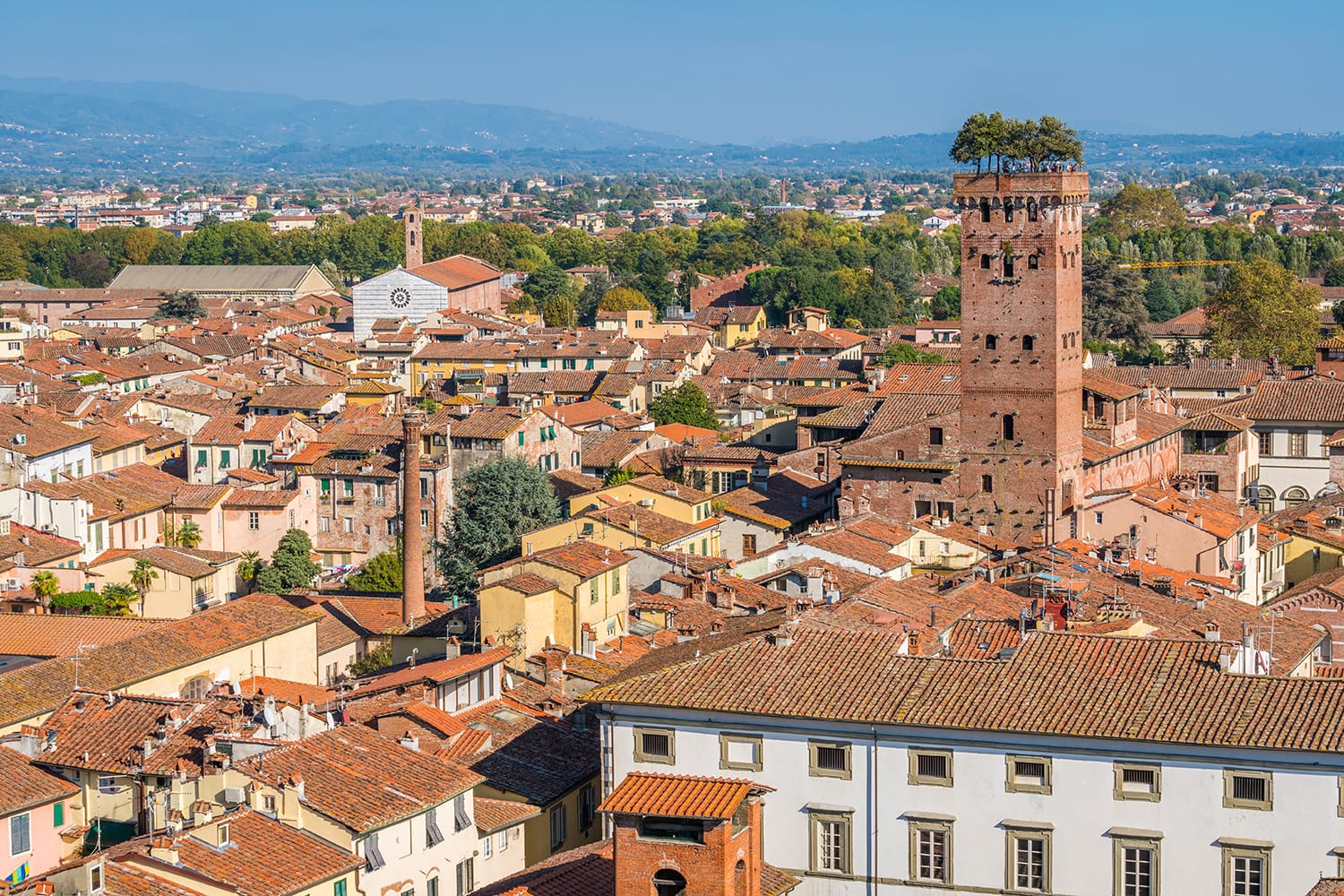 Panoramic view in Lucca, with the famous Guinigi Tower. Tuscany, Italy.