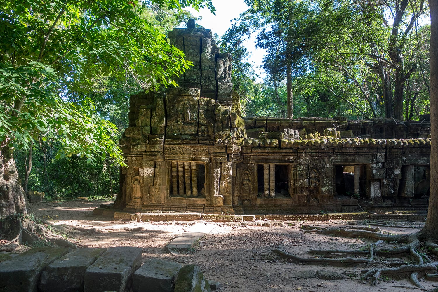 Temple at Angkor Wat hidden in the jungle. Cambodia