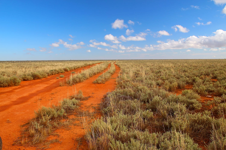View across the Nullabor Plain in Australia