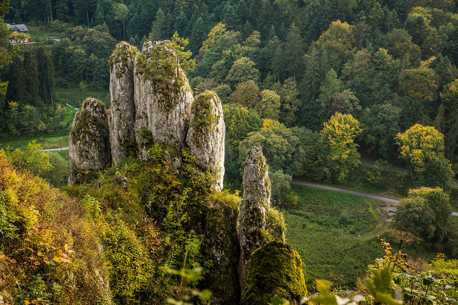 "Rock ""glove"" in Ojcow National Park, Silesia, Poland"