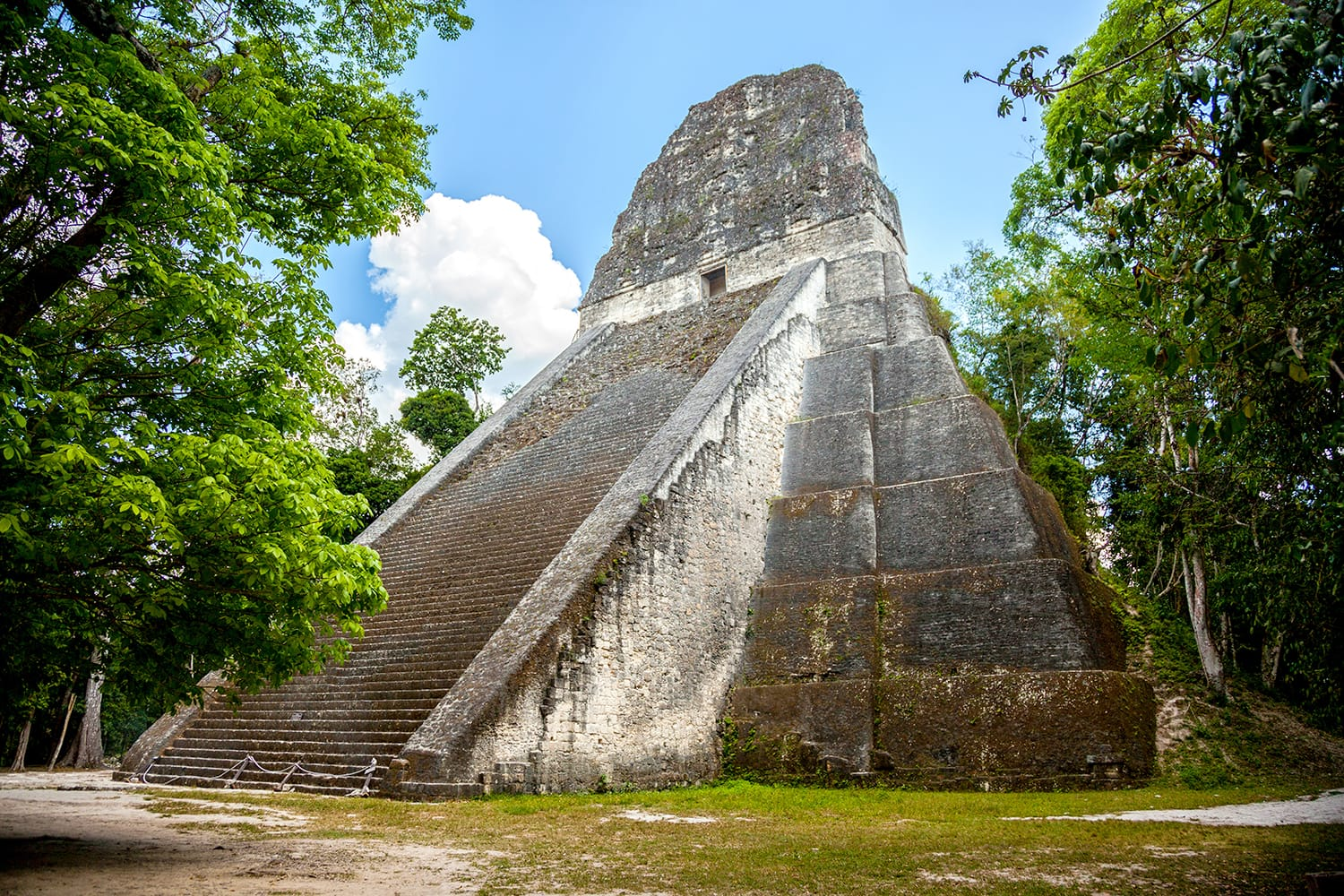 Temple V stands south of the Central Acropolis and is a mortuary pyramid. It has been dated AD 700, in the Late Classic period of the Mayas. is the second tallest structure in Tikal, Guatemala.
