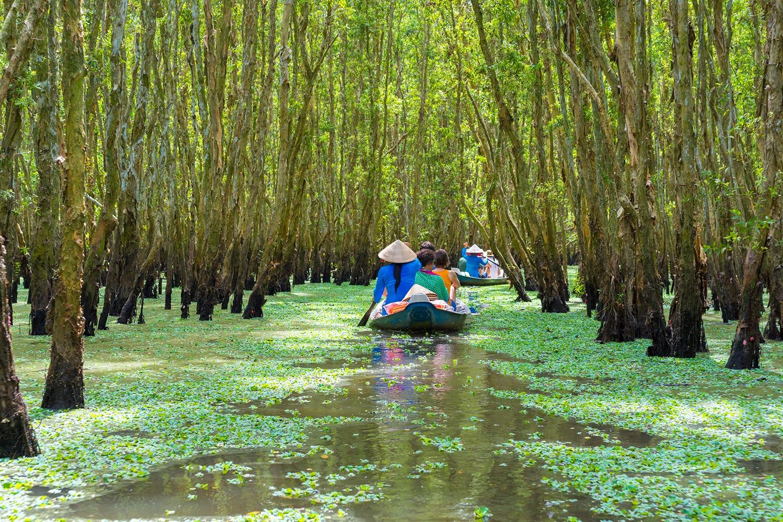Tourists rowing boat in Mekong delta, Vietnam