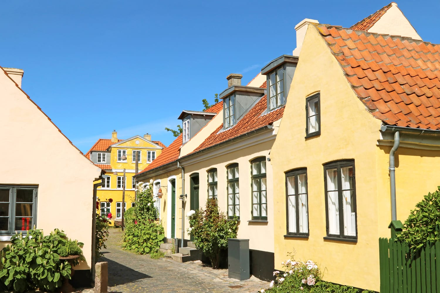 Cobbled street with yellow-painted houses in Dragor, Denmark