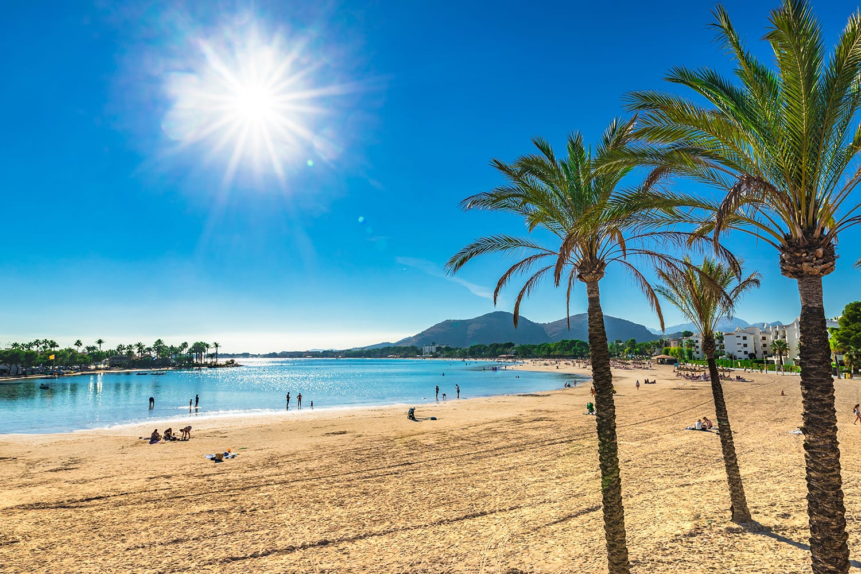 Beautiful view of Platja d'Alcudia with palm trees, sand beach Majorca, Spain