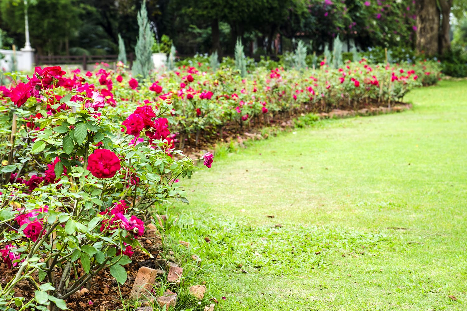 Rose Garden Thai Village in Thailand