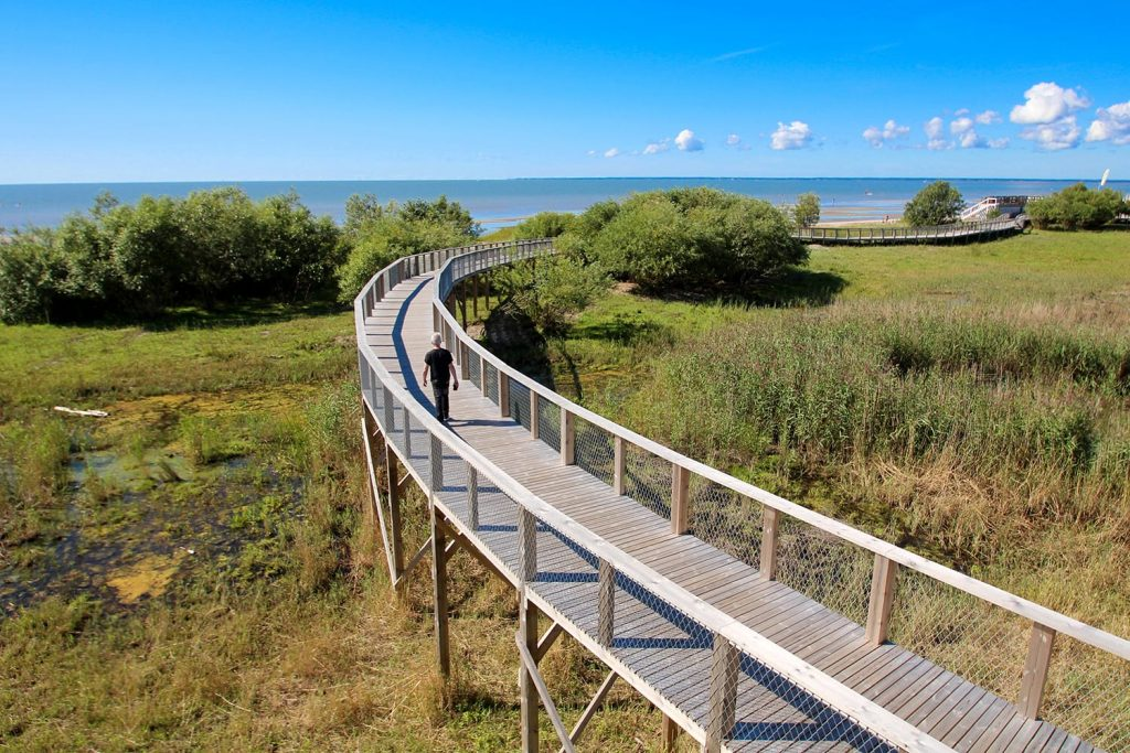 Observation platform and beach in Parnu, Estonia