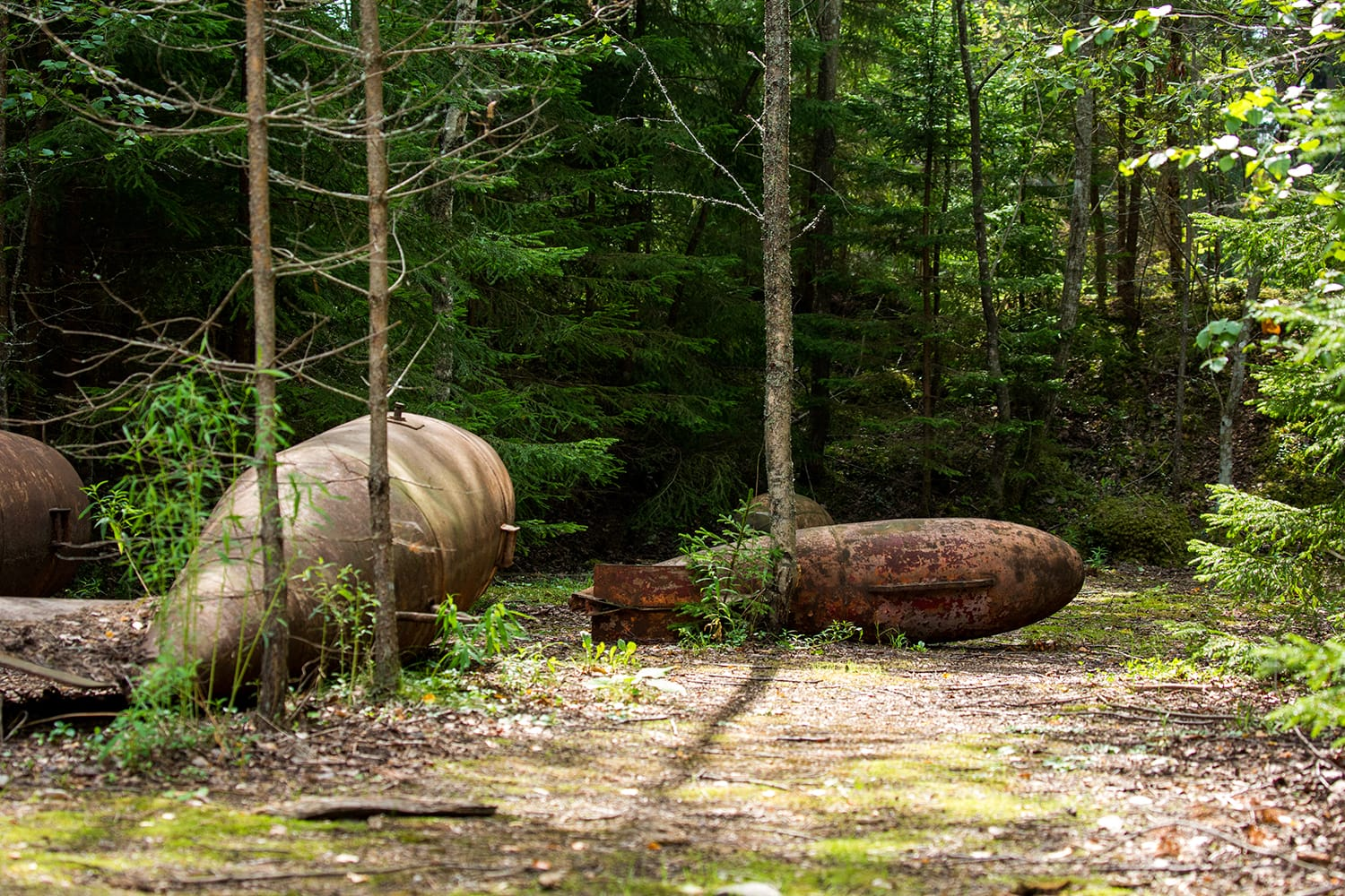 Old bombs in the forest Naissaar, Estonia