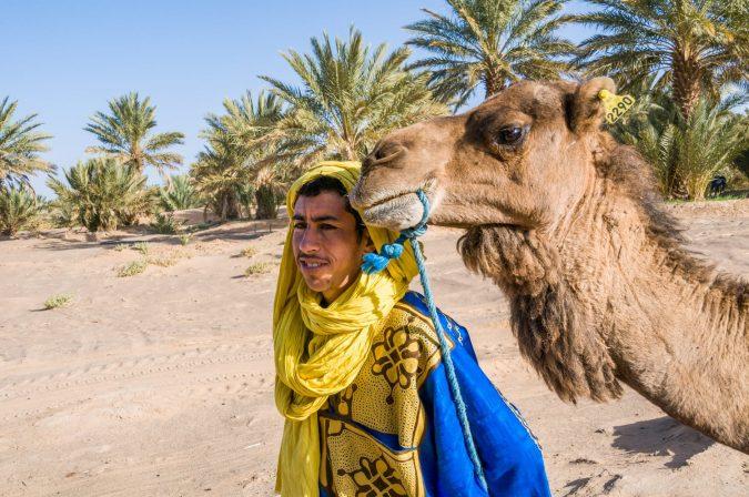 Man next to his camel, in a palm grove near the desert of Erg Chebbi, Morocco