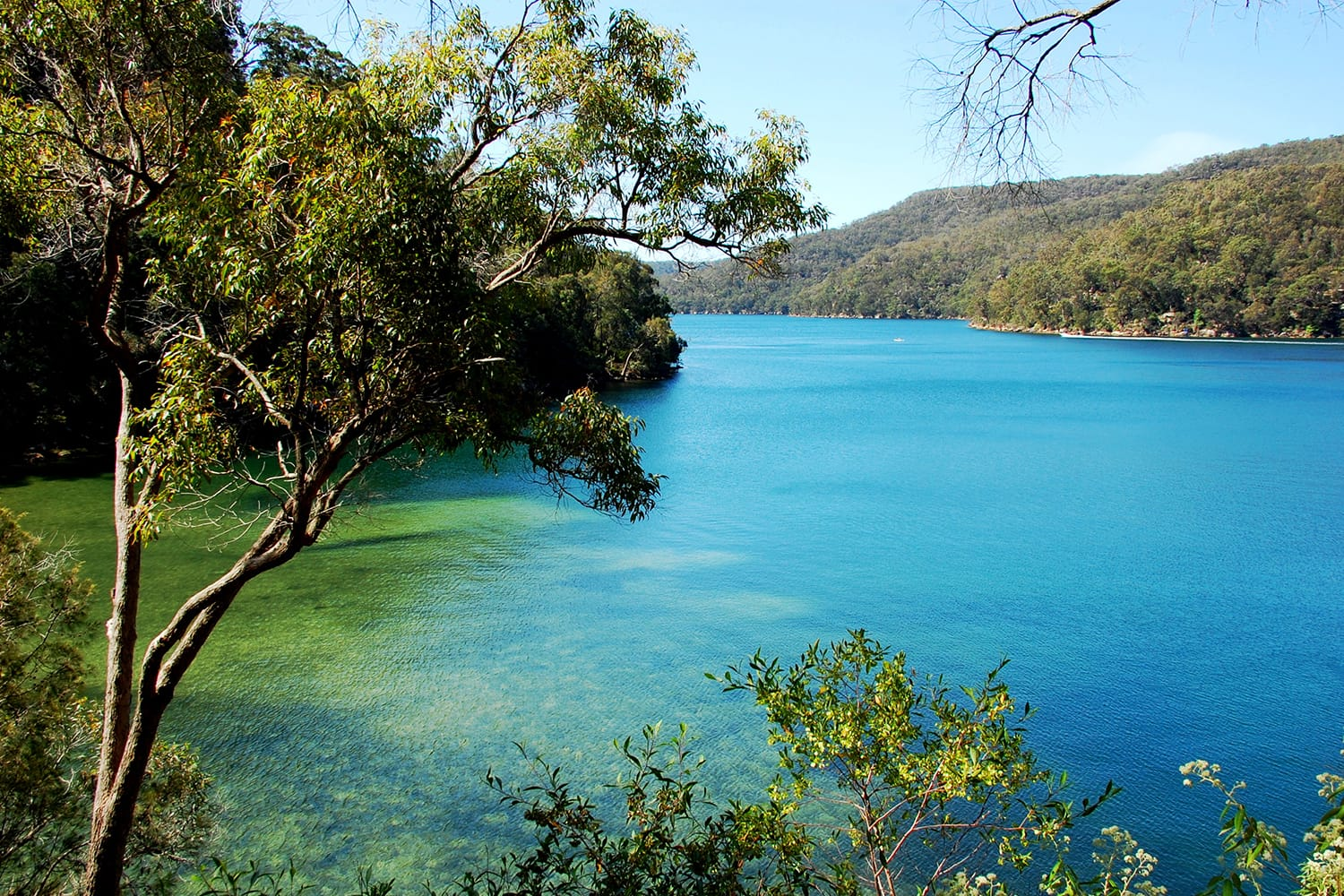 Ku-ring-gai Chase National Park. Mont Kuring-gai track. Tracking in Australia, New South Wales.