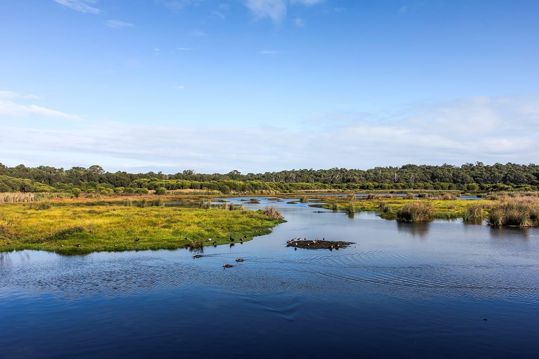Lake in Yanchep National Park in Perth, Western Australia