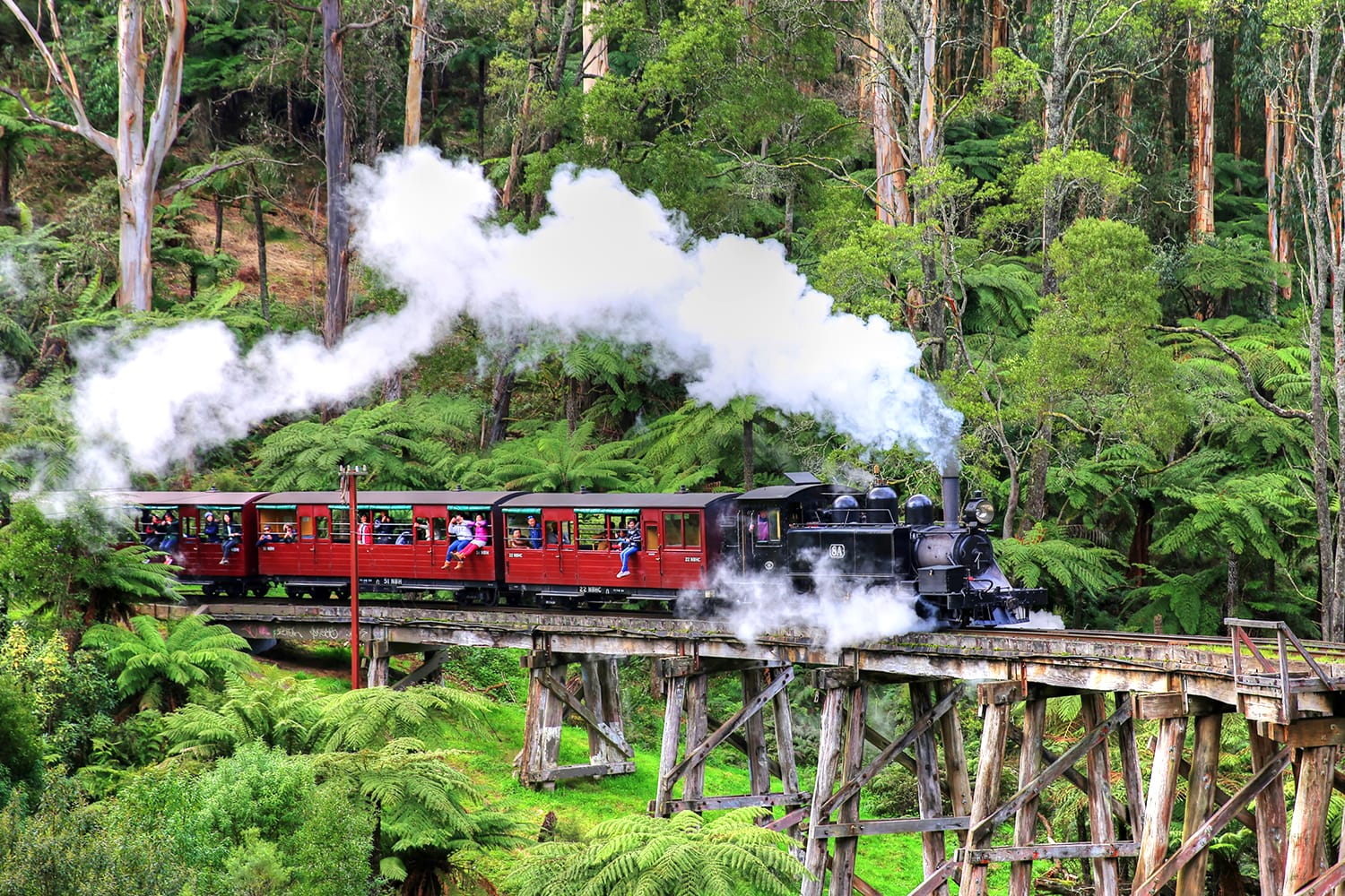 The Puffing Billy narrow gauge steam train crossing the Belgrave trestle bridge in The Dandenong Ranges, Australia