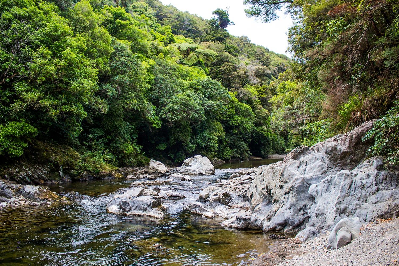 River in Rivendell in Kaitoke Regional Park, New Zealand