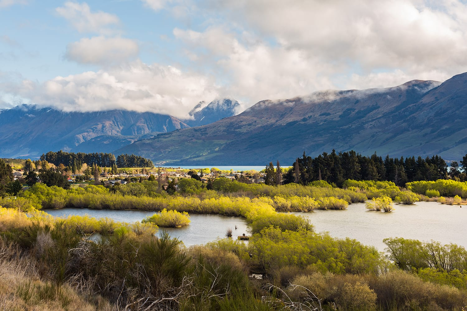 Wetland swamp in glacial Rees Dart river valley in Glenorchy, New Zealand