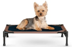 K&H Pet Products Original Elevated Dog Bed