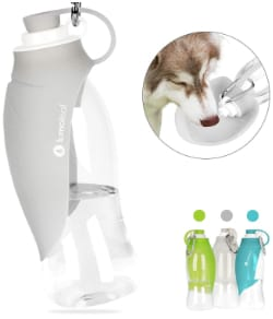 LumoLeaf Water Bottle for Dogs