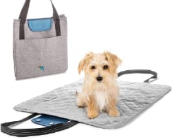 Riley and Mae Travel Dog Bed Bag