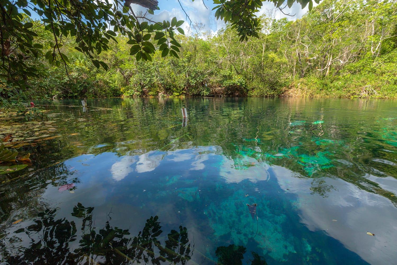 Aktun-ha or Carwash Cenote in Mexico