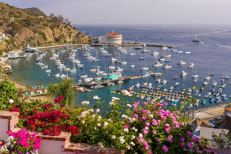 Flowers, harbor and Casino in town of Avalon, Santa Catalina Island, California, USA