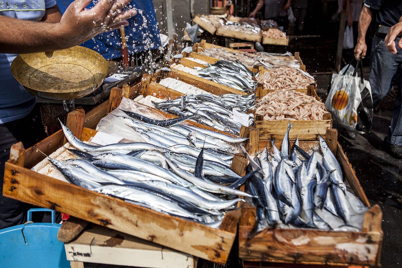 Fish market in Catania, Sicily, Italy