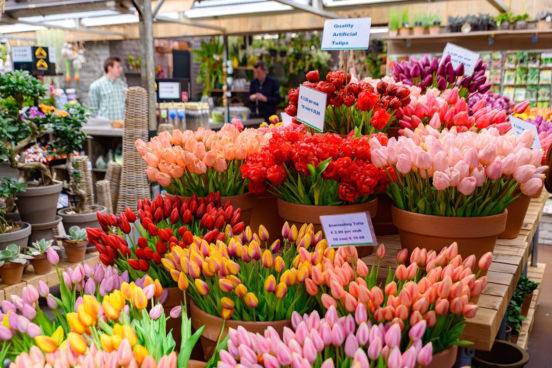 Bloemenmarkt, the floating flower market in Amsterdam, Netherlands